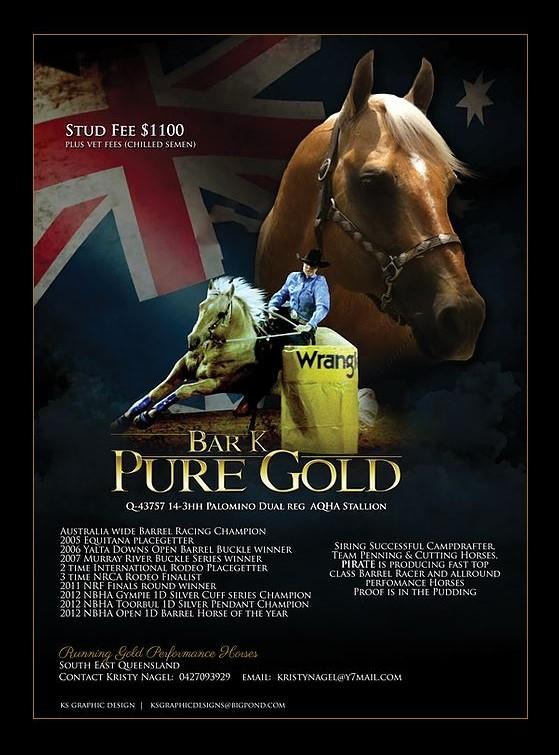 Rodeo Equine Performance Registry Of Australia